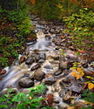 109.1 - Tofte:  Onion River, Early Autumn