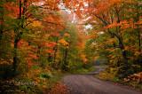 ** 86.3 - Sawtooth:  Honeymoon Trail Curve, Advanced Autumn