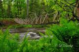 78.1 - Brule River Swinging Bridge (HDR)