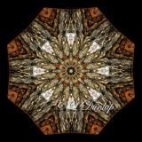 White Pine Bark -- Northwoods Kaleidoscope