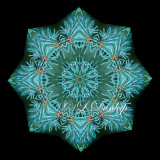 * Blue Spruce 2 -- Northwoods Kaleidoscope