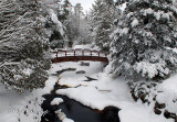 58 - Foot Bridge Over The Black River, Winter