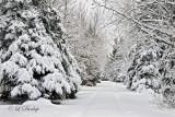 58.1 - Christmas Day Snow