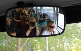 Kiwi Photographer..on bus in Melbourne.