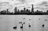 Melbourne City...
