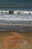 Autumn Day - Red Beach - Whangaparaoa