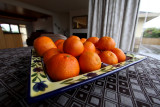 Can I tempt you with an Orange....