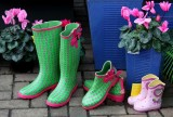 Colourful Gumboots  as we call them in New Zealand...