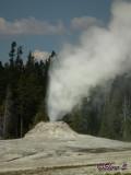 Lion geyser group