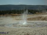 Sawmill geyser