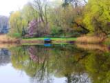 *211, Lake Colors, Rye