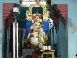 Perumal Hamsavahana Purappadu.JPG