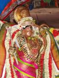 Kumbakonam Ramaswamy - Ramanavami Utsavam Purappadu 7.jpg