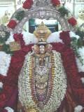Mamunigal before Evening Purappadu.jpg