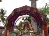 Sri Alavandar during purappadu.JPG