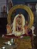 Perumal Kovil Sri Perarulaalan Thiru Pavithra Uthsavam