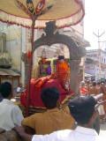 14_2011_Srivilliputtur_Thiruvaadipuram_Day07_Morning_PinSevai.JPG