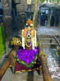 25_2011_Srivilliputtur_Thiruvaadipuram_Day09_AandaalReadyToLeaveForNandavanamForSaattrumurai.jpg