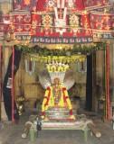 Nam Swami in SeshaVahanam .JPG