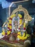 Perumal Kovil Sri Pei Azwar Avathara Uthsavam