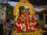 Sri Ranganathaswami-THAYIL MAGAM .JPG