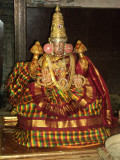 Perumal Kovil Dhavana Uthsavam Day 2 and 3