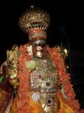 Sri  Yathokthakari Swamy Simha Vahanam -  1st day Evening