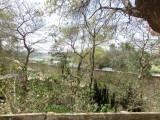 06 Gomti river 01.jpg