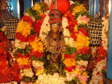 Sri Perumal with Ubhayanaachimaar on Tiruther.JPG