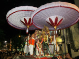 Thiruvallikeni Sri Parthasarathy Swamy - Gudhirai Vahanam - 8th day Night