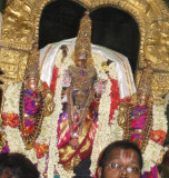 Perumal During Purappadu.JPG