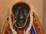 Lakshminrusimhan during pavitrotsavam