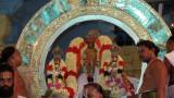 Perumal Kovil Brahmothsavam - Sri Perarulalan @ Chandra Prabhai