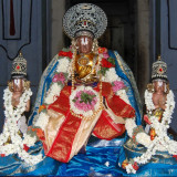 Perumal Kovil Sri Nammalwar Avathar Uthsavam - vaigasi Visagam