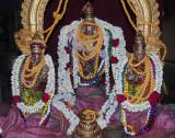 svdds_nandhana_pavithrothsavam_day_3