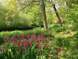 Fairhaven Water gardens...