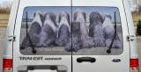Ford Transit rear window screen