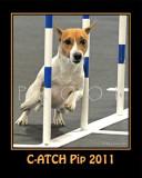 Hughes 8x10 Pip mini poster SCA 0572