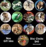 Sample clocks