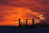 Corner Fencerow with Sunset