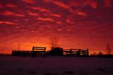 Evona Sunrise with Corral