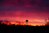 Sunrise Purples