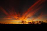 November Sunrise I