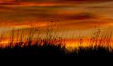Thanksgiving Sunset Series