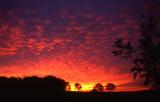 Morning Sunrise with Mammatus-Like Clouds