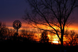 Sunset with Trees & Windmill
