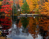 New England & Fall