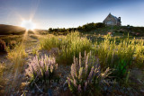 Church of the Good Shepherd sunrise, Tekapo