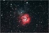The Trifid Nebula, M20, in Sagittarius