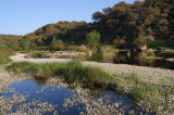 Rio Almonte